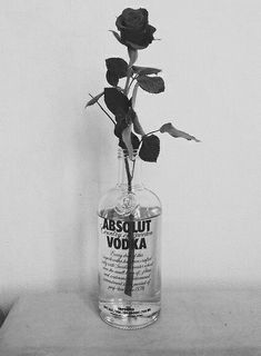 black and white aesthetic Image about black and white in Gardenflowernature by dorcii^^ Gray Aesthetic, Black Aesthetic Wallpaper, Black And White Aesthetic, Aesthetic Collage, Aesthetic Bedroom, Aesthetic Grunge Black, Aesthetic Roses, Alcohol Aesthetic, White Wallpaper
