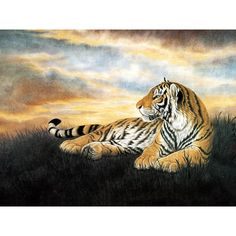 tiger painting ❤ liked on Polyvore