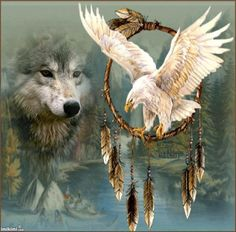 wolf and white eagle