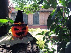 Abobora Halloween #receita #halloween