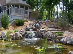 Get inspiration for backyard ponds! View pond pictures, pond images and photos of Aquascape backyard ponds and water gardens. Learn about ponds!