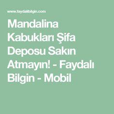 Mandalina Kabukları Şifa Deposu Sakın Atmayın! - Faydalı Bilgin - Mobil
