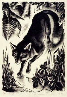 Fox 1936 by Agnes Miller Parker (Scottish 1895–1980) . .. (wood engraving)