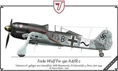Fw-190 Paint Schemes   Focke Wulf Fw 190 A-8/R-2, flown by Willi Maximowitz