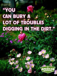 On peut enterrer bien des problèmes en creusant le sol.