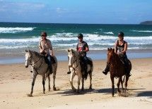 Horse riding on Noosa North Shore.