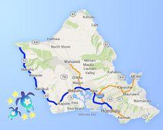 Hidden gem west Oahu tour #hawaii #hawaiitour #oahu #tour #snorkelingtour #snorkeling #westoahu #ocean