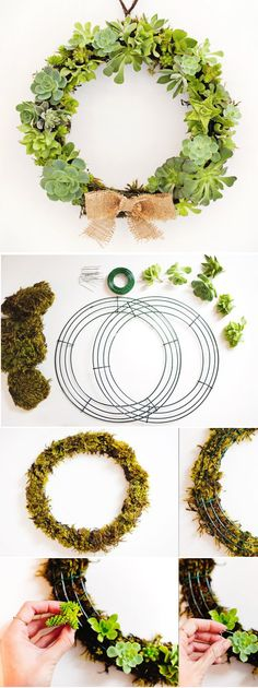 """Succulent Wreath tutorial. Maybe everyone could help make a succulent wreath for us to hang on our door. """"Watch our love grow"""" js"""