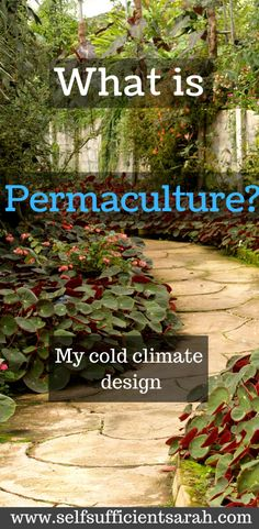 is permaculture? - Self Sufficient Sarah - What is permaculture? – Self Sufficient Sarah -What is permaculture? - Self Sufficient Sarah - What is permaculture? – Self Sufficient Sarah - Permaculture Courses, Permaculture Design, Permaculture Garden, Cold Climate Gardening, Organic Gardening, Save Mother Earth, Self Sufficient, Homestead Gardens, Growing Herbs