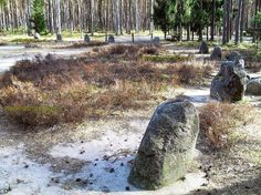 Stone circle in Grzybnica - Polish Stonehenge (Kromlech's in Poland) -  Not many people knows, that in Poland are 4 such stone circles !