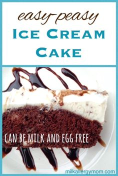 Are Dairy Queen Ice Cream Cakes Allergy Free