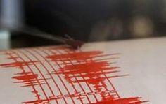 Un cutremur mic, cu magnitudinea de moment Mw 4.6, a avut loc in Vrancea,  pe data de 24 Ianuarie 2015, la ora locala 09:55:46 . Cutremurul, de natura tectonica, a fost unul de tip subcrustal (intermediar), focarul acestuia fiind localizat la o adancime de 100 km. Seismul s-a simtit si la Constanta.
