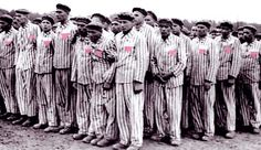 Pastor Worley says gays and lesbians should be rounded up and left to die off behind electrified fences. A similar instance already happened... it was called the Holocaust.