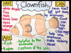 The Creative Colorful Classroom: Informational Anchor Charts Ocean Activities, Preschool Activities, Preschool Worksheets, Summer Activities, Ocean Habitat, Ocean Projects, Ocean Unit, Under The Sea Theme, Sea Crafts