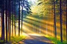 Afbeeldingsresultaat voor mooie achtergronden van natuur