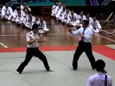 2008 World Hapkido Championship-Lee Chang Soo - Demo