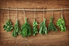 Herbs and spices are jam-packed with health-promoting chemicals, and they have more antioxidants than most fruits and vegetables. Here are five herbs and spices that are especially great for fending off disease. Tips & Tricks, House Smells, Growing Herbs, Medicinal Herbs, Healing Herbs, Fresh Herbs, Fruits And Vegetables, Freezing Vegetables, Herb Garden