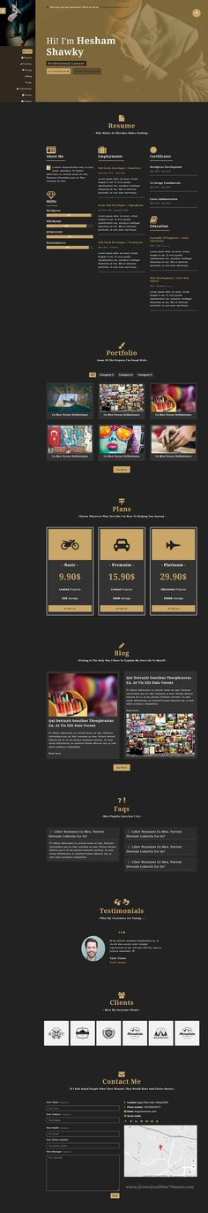 Pin by mohsen ahmadian on my website Vcard Pinterest Website - personal resume website template