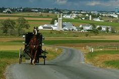 Abe's Buggy Rides 2596 Old Philadelphia Pike Bird-in-Hand, PA 17505 717-392-1794