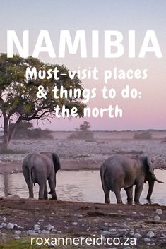 Places to visit and things to do in Namibia: the north - Roxanne Reid