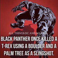 Daily Facts #blackpanther #marvel #allthingsdcandmarvel -Malvin...