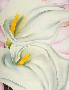 Georgia O'Keeffe - Two Calla Lilies on Pink; Philadelphia Art Museum
