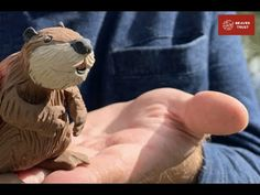 Media hub – The Beaver Trust Lodge Beaver Animal, Trust, Teddy Bear, Animation, Character, Teddy Bears, Animation Movies, Lettering, Motion Design