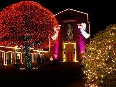 Portland, Oregon: The Grotto's Christmas Festival of Lights