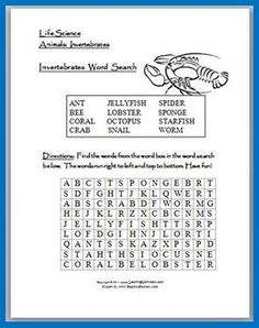 Free Invertebrates Word Search Puzzle - includes 12 different invertebrate animals.   An answer sheet is also included.  **** To view my Invertebrates Bingo Game, please click on the link below  Invertebrates Bingo Game  **** To view more of my Science Products, please click on the link below.