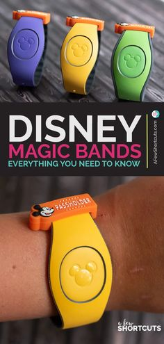 Disney Magic Bands: Everything You Need to Know!