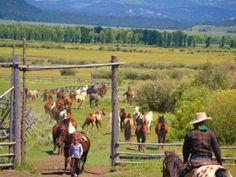 ranch life...