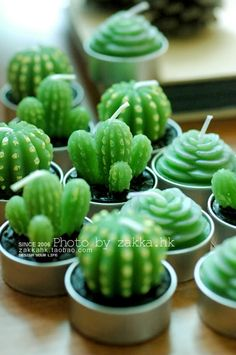 Cute bonsai romantic special small desert plants cactus ball Alocasia candles scented candles - Taobao