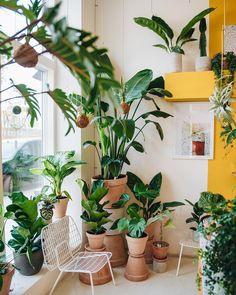 Plant Stand Design Ideas for Indoor Houseplants – Page 37 of 67 – LoveIn Home - Dekoration Ideen Indoor Garden, Indoor Plants, Indoor Plant Decor, Indoor Outdoor, Porch Plants, Decoration Plante, House Plants Decor, Interior Plants, Plant Design