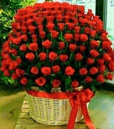 Happy Anniversary tabassum and Amjad Beautiful Flowers Wallpapers, Beautiful Rose Flowers, My Flower, Pretty Flowers, Rose Flower Arrangements, Flowers Gif, Happy Birthday, Types Of Flowers, Flower Wallpaper