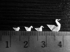 Mui-Ling Teh's Ever So Tiny Origami - 3cm Family Swim