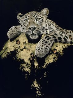 Under His Watchful Eyes - Sally Maxwell, master scratchboard artist