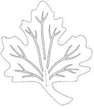 Maple Leaf Trivets - Woodworking Crafts Magazine - woodworkersinstitute.com;