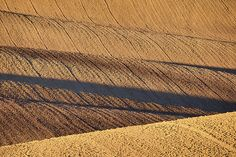 Autumn light and shadow in countryside by Pavel Rezac Autumn Lights, Light And Shadow, Tuscany, Countryside, Design Inspiration, Tuscany Italy