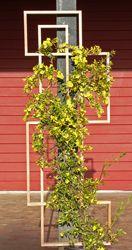 LatticeStix plant trellis
