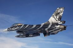 """BAF F-16AM special """"Tiger"""" scheme for the NATO Tiger Meet being held this week in Kleine-Brogel AB, Belgium. Description from arcforums.com. I searched for this on bing.com/images"""