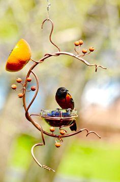 Woodworking Projects For Junior Cert .Woodworking Projects For Junior Cert Oriole Bird Feeders, Humming Bird Feeders, Bird House Feeder, Diy Bird Feeder, Backyard Birds, Yard Art, Bird Feathers, Garden Projects, Bird Houses