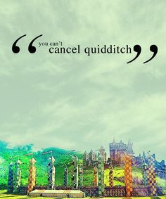 I wish Quidditch was real. Then I could actually say that I would watch a sport. :p