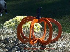 Horseshoe pumpkin if only i knew how to weld Horseshoe Projects, Horseshoe Crafts, Horseshoe Art, Horseshoe Ideas, Fall Crafts, Decor Crafts, Holiday Crafts, Holiday Ideas, Thanksgiving Crafts