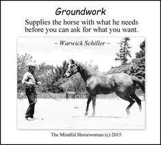 Rodeo Quotes, Equestrian Quotes, Equestrian Problems, Horse Training Tips, Horse Tips, Horse Barns, Horse Stalls, Warwick Schiller, Inspirational Horse Quotes