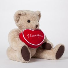 Personalized Teddy Bear with Message Pillow