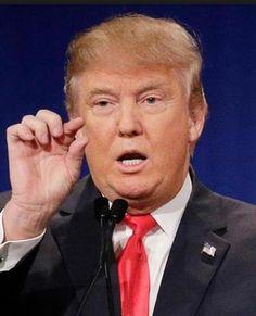 #DonaldTrump  #HillaryClinton  #SexualAssault #celebritynews #news #celebrity