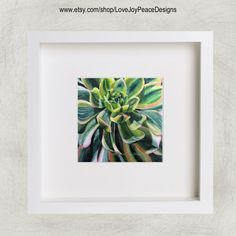 Succulent Colored Pencil Painting photo by LoveJoyPeaceDesigns
