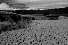 Mundo : Segue o seco - Revista Greenpeace