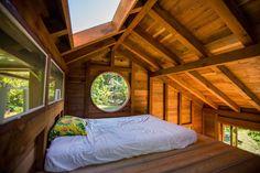 Coolest Cabins: Neat jungle cabin
