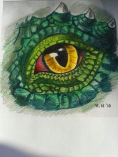 Drakenoog dd 07/06/2015